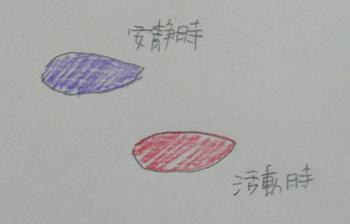 ぶどう膜炎3.JPG
