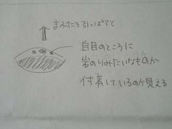 takana1002_3.JPG